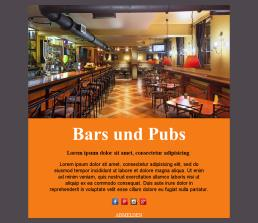 Bars and Pubs-basic-02 (DE)