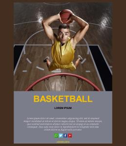 Basketball-basic-01 (DE)