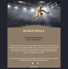 Basketball-basic-03 (DE)